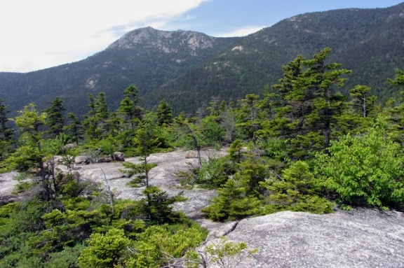 Mount Chocorua from Carter Ledge
