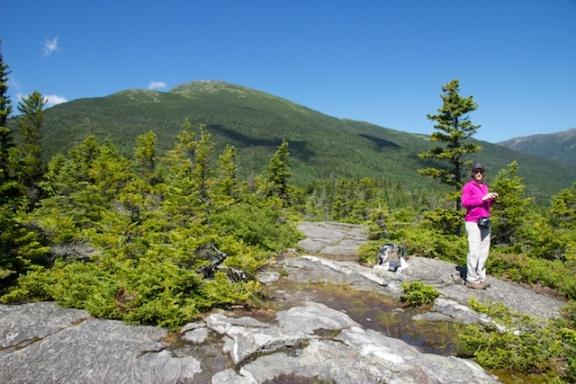 Mount Washington from Low's Bald Spot