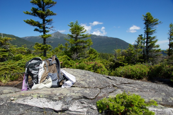 Mount Jefferson from Low's Bald Spot