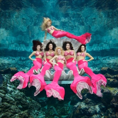Weekii Wachee Mermaids