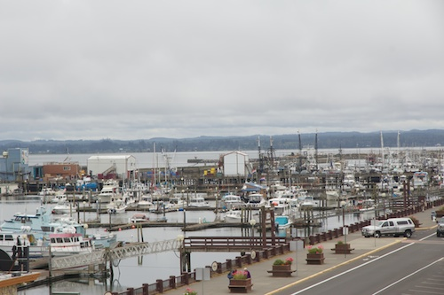 Westport, Washington's fishing fleet