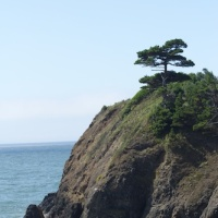 Labor Day in Port Orford, Oregon - a Gem of a Place