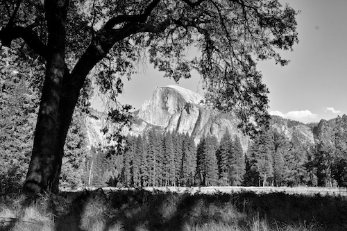 Half Dome, an homage to Ansel